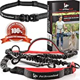 🔴 ONE WRONG MOVE CAN CAUSE A LIFELONG PROBLEM. Uncontrolled jerks while in the leash can affect your dog's spine, lead to thyroid gland issues or pulmonary edema. While other Hands Free Dog Leashes have one or two bungees, Pet Dreamland Dog R...