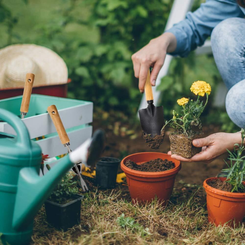 AHCSMRE Garden Hand Trowel Transplanting with Ergonomic Wooden Handles,Heavy Duty Stainless Steel Garden Hand Weeder Mini Garden Hand Tools Set for Weeding