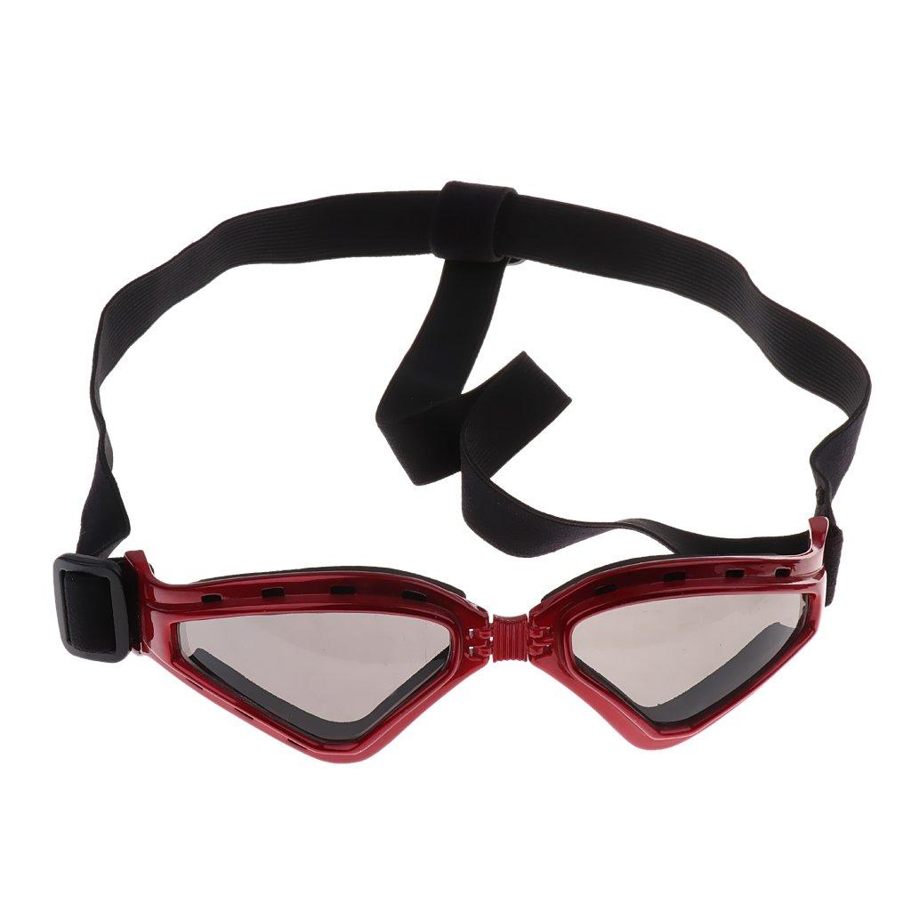 47fe06af4b NON Sharplace Gafas de Sol para Perros Complimentos Lentes Protectores  contra Rayos UV - Rojo: Amazon.es: Deportes y aire libre