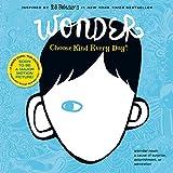 Books : Wonder Wall Calendar 2018