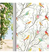 Coavas Privacy Window Film Opaque Non-Adhesive Frosted Bird Window Film Decorative Static Cling F...