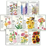 """Botanical Interests""""Cut Flower"""" Seed Collection - 10 Packets with Gift Box"""