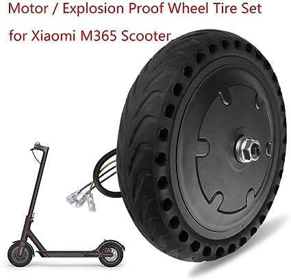 Amazon.com: Goolsky - Juego de neumáticos para motores ...