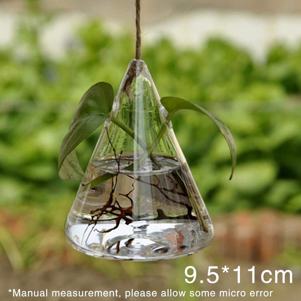 draulic Jardín trabajo alta moldeada geométrica transparente ...
