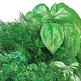 Miracle-Gro AeroGarden Gourmet Herb Seed Pod Kit (3-Pod)