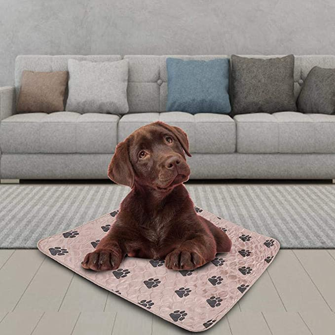 Delaman Dog Pee Pad Holder Lavable Perro Orina de Cama Orina Impermeable Alfombra Reutilizable para Mascotas Perros Gatos (Size : L): Amazon.es: Productos ...