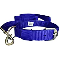 Pawzone Blue Leash with Collar Set for Dogs Small
