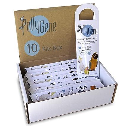10 Bird DNA Gender Testing Sample Collection Kit  Avian Gender