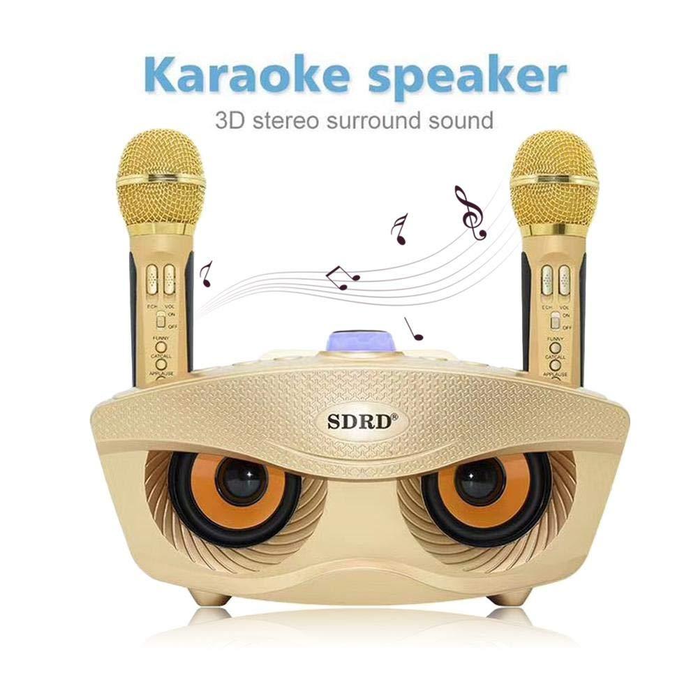 Leegoal Karaoke Speaker Portable Bluetooth Karaoke System Machine with Bluetooth/AUX/USB/SD Card Connectivity 2 Wireless Microphones