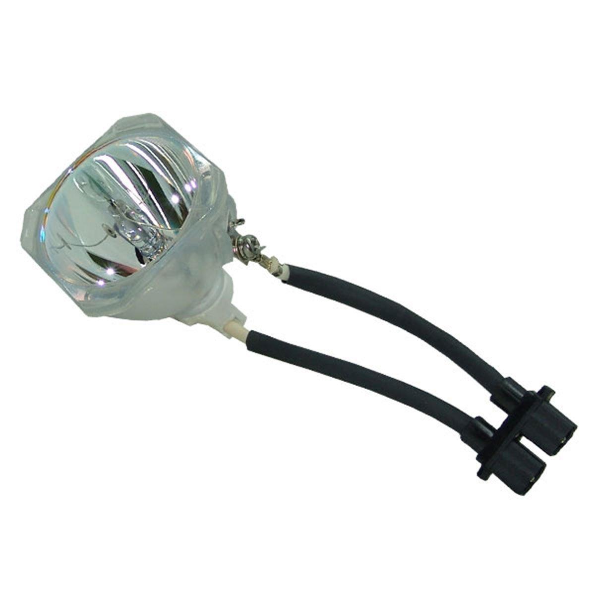 SpArc OEM プロジェクター交換用ランプ 囲い/電球付き Optoma HD70用 Platinum (Brighter/Durable) B07MPRRCZV Lamp Only Platinum (Brighter/Durable)