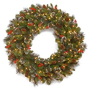 National Tree 24 Inch Crestwood Spruce Wreath with Silver Bristles, Cones, Red Berries