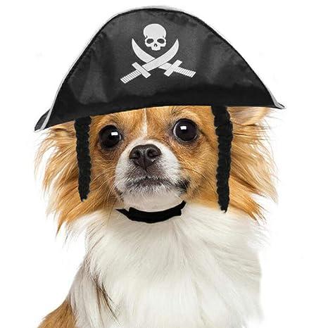 CJN Sombrero del Partido del Pirata del Animal Doméstico De ...