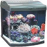 JBJ 24 Gallon Nano-Cube Deluxe Aquarium 2X36W Compact Fluorescents & LED Moonlights