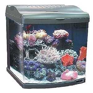 Jbj transworld aquatics jbj 24 gallon nano for Nano cube fish tank