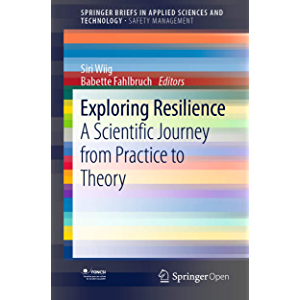 Exploring Resilience: A Scientific Journey from Practice to Theory (SpringerBriefs in Safety Management)