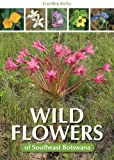 Wild Flowers of Southeast Botswana, Gwithie Kirby, 1775840336