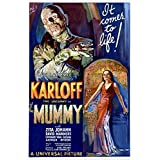 BORIS KARLOFF the mummy MOVIE POSTER 1932 campy classic horror 24X36 SCARY (reproduction, not an original)