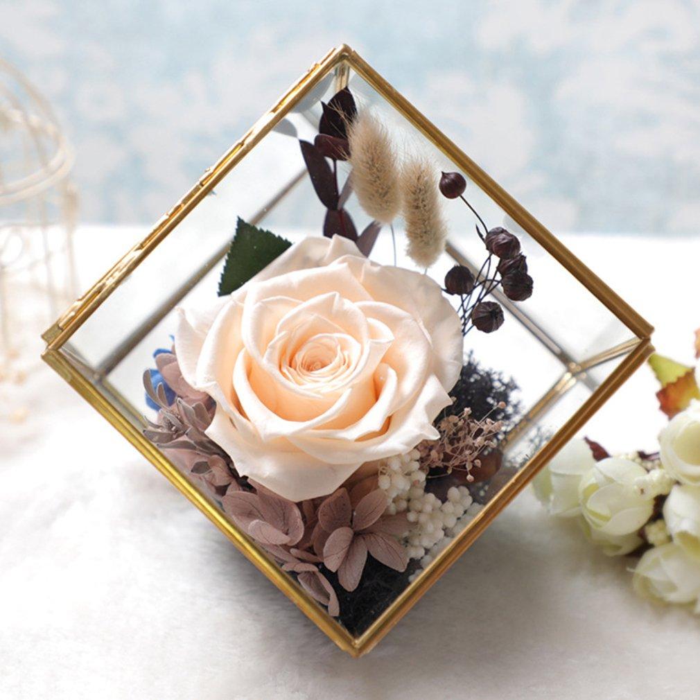 プリザーブドフラワー バラ 枯れないお花 プリザーブドフラワー グラスハウス フラワーギフト ブリザード フラワー アレンジメント フラワー クリスマス/誕生日プレゼント/お祝い/結婚祝い/記念日 花 贈り物 ギフト 5色 (シャンパン) B077XYH5FT シャンパン シャンパン