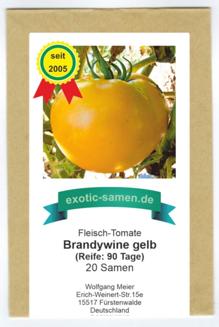Brandywine Black Fleischtomate alte Sorte süße große Früchte