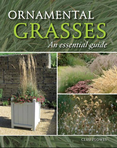 Ornamental Grasses: An Essential Guide