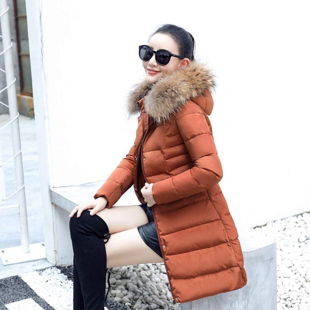 LXIANGP Veste en Duvet épaisse pour Femme 2018, col Fourrure d'hiver à Capuche, Long Manteau en Coton, Rue des Loisirs de Plein air, 4 Couleurs S-XXXL A