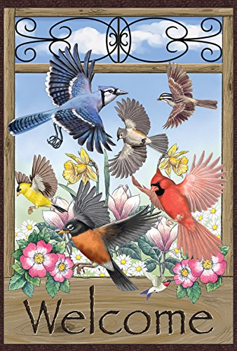 Toland Home Garden Welcome Wings 12.5 x 18 Inch Decorative Flying Bird Cardinal Jay Spring Summer Flower Garden Flag