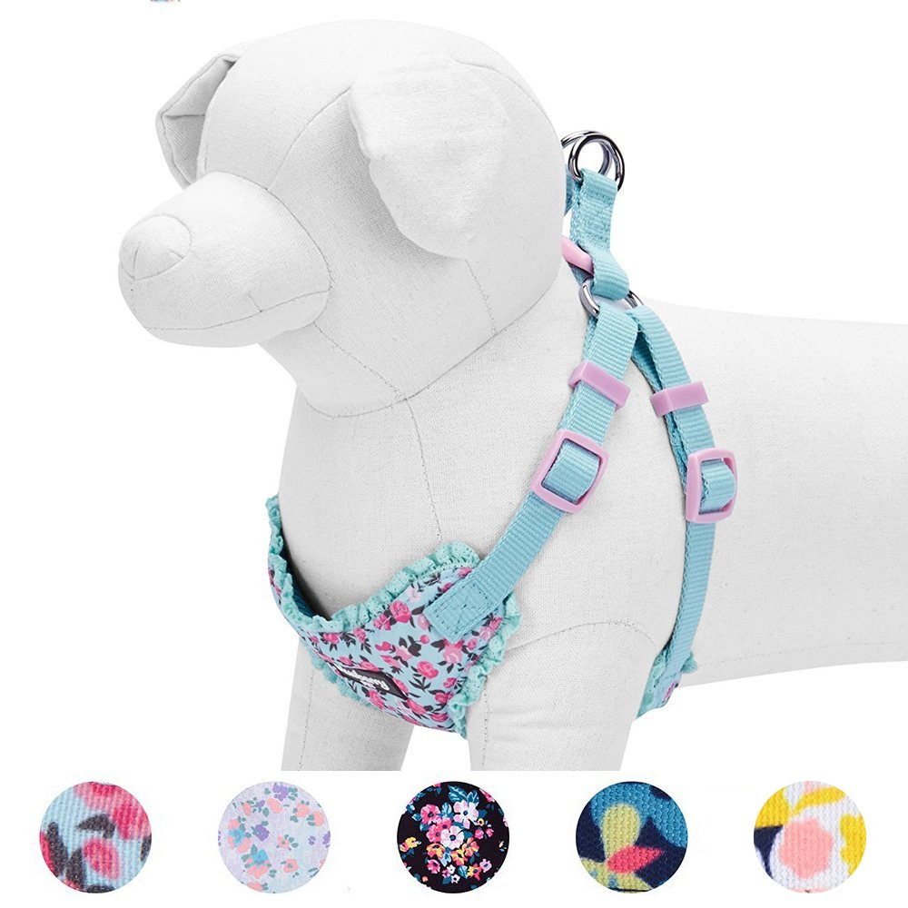 Blueberry Pet 5 Patterns Soft & Comfy Spring Made Well Cute Floral No Pull Mesh Dog Harness Vest in Light Blue, Chest Girth 17.5''-21'', Small, Adjustable Harnesses Dogs