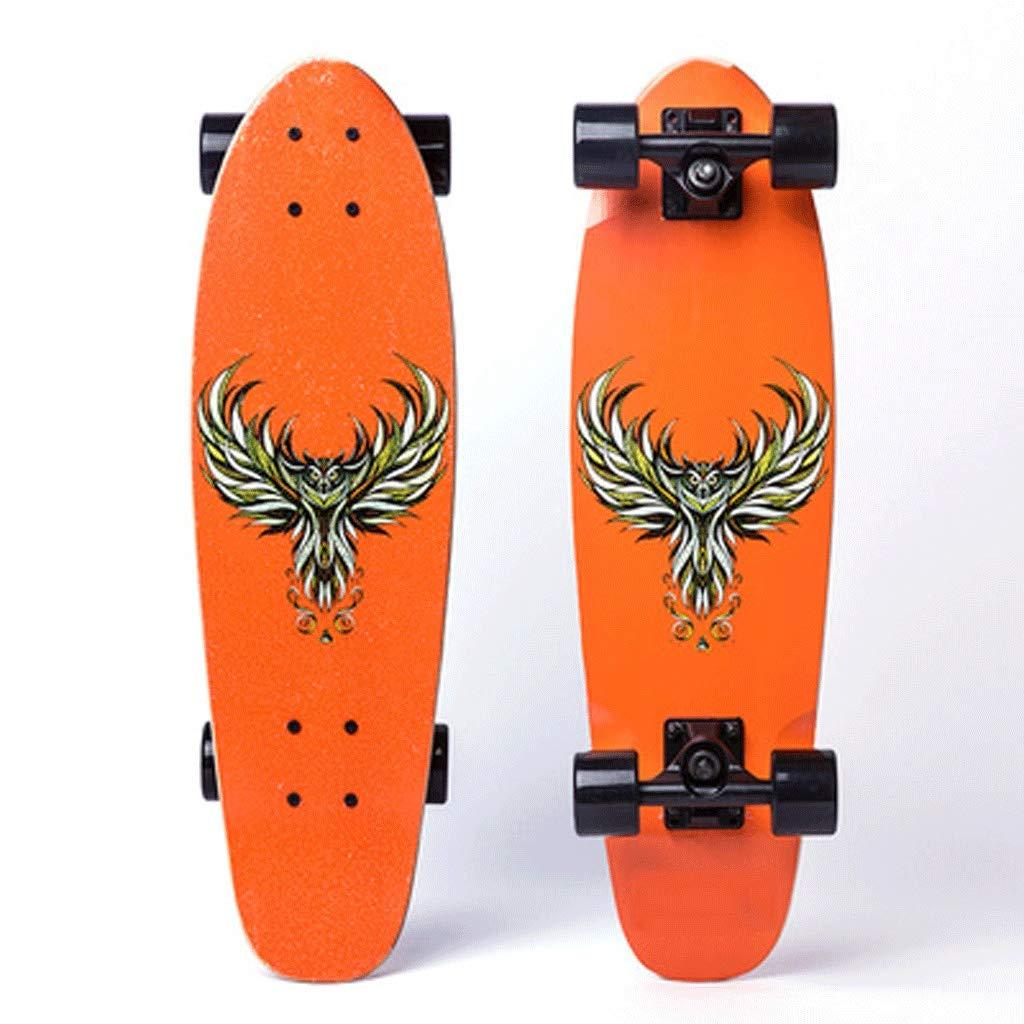 新しい到着 厚手の魚板男の子と女の子若者初級プロフェッショナルボード耐摩耗性四輪歩行スケートボード (色 (色 Orange : 黒) 黒) B07L1P3DXJ Orange Orange, 激安輸入雑貨店:f82dd66b --- a0267596.xsph.ru