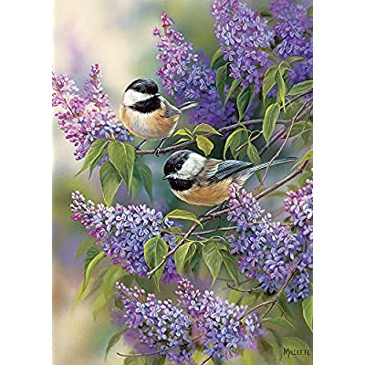 Cobblehill 58877 Tray 35 Chickadee Duo Puzzle, Various: Toys & Games