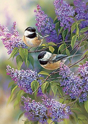 Cobble Hill Chickadee Duo