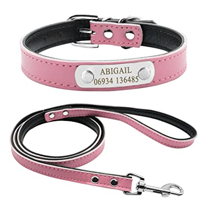 7a55d2a24ef4 Didog Soft Leather Padded Custom Dog Collar and Leash Set with Personalized  Engraved Nameplate,Fit