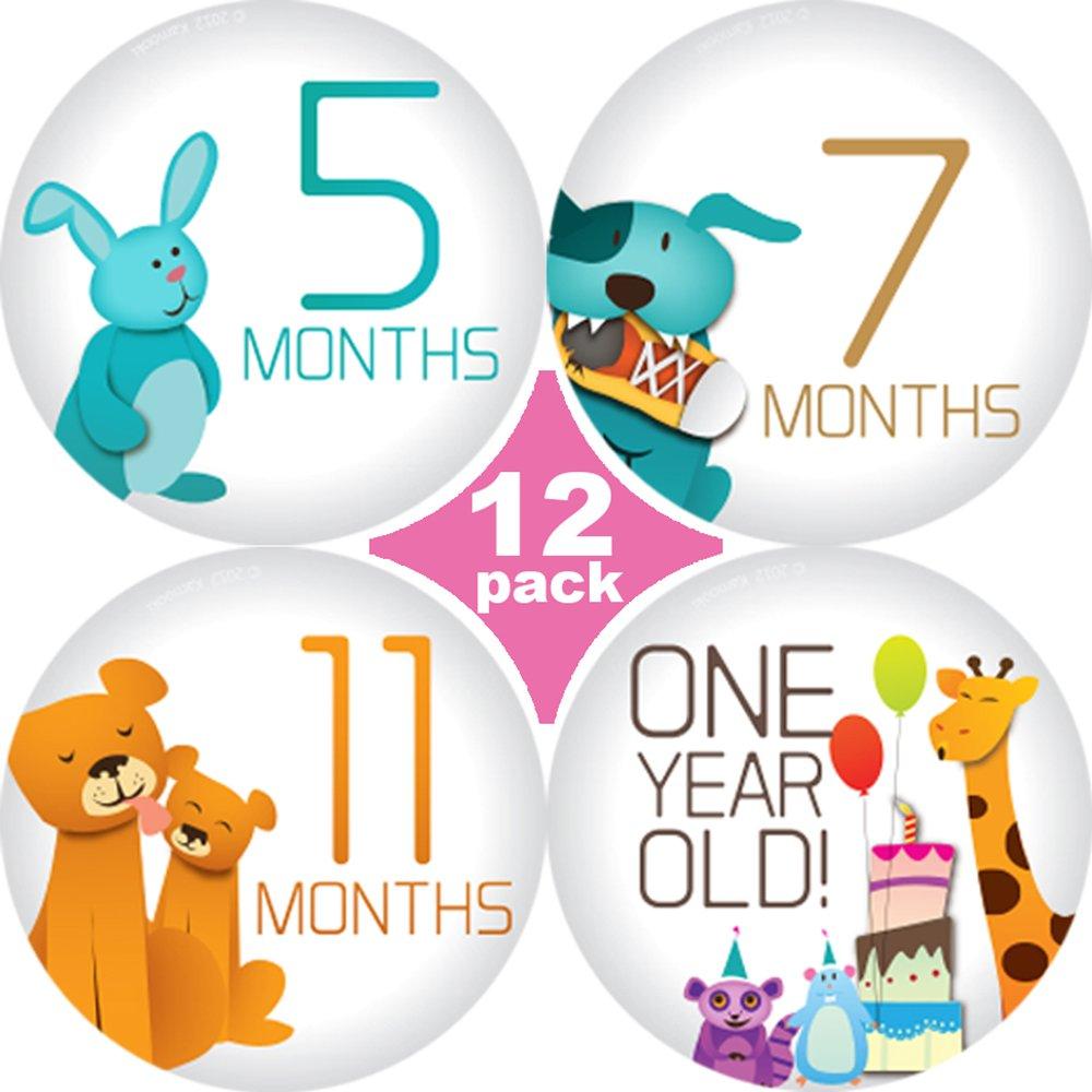 Amazon com original sticknsnaptm 12 unisex happy animals tm milestones stickers 3 25 baby