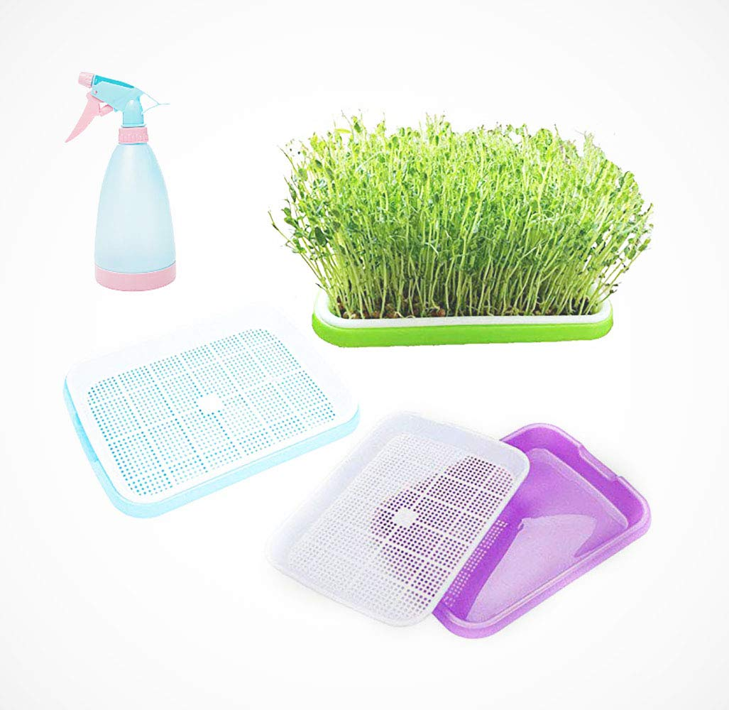 Seed Sprouter Tray Without Lid, Seed Germination Tray BPA Free Nursery Tray for Seedling Planting Garden Wheat Hydroponics (3pcs per Set with one Spray Bottle) by wanyi