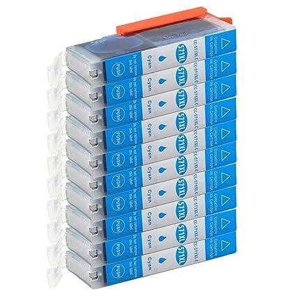 Teng® 10 Cartuchos de Impresora Cian compatibles con Canon PGI-570 ...
