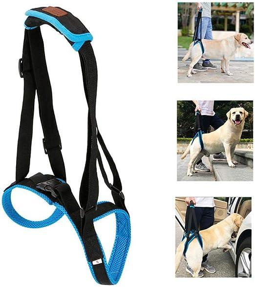 HITECHLIFE 9,84 Fu/ß verstellbare Handgelenk einziehbare Hundeleine Pet Nylon Traktionsseilg/ürtel Handgelenkriemen Stretch f/ür Pet Puppy//Medium Dogs