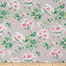 Robert Allen Madcap Cottage by Mirador Morn Oyster Fabric By The Yard