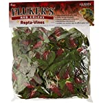 Fluker's 51017 Repta Vine Small Animal Hanging Vine, Red Coleus 4