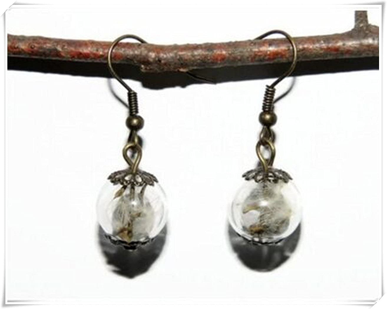 Diente de cristal Orb pendientes, pendientes de bola de cristal con flores secas, pequeño MUNDO Orb pendientes, otoño joyas, latón envejecido