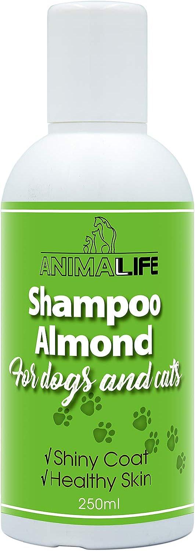 Champú Perros & Gatos 250ml - Aceite de Almendras - Aceites Esenciales de Lavanda & Menta Japonesa - Nutrición - Fácil de Peinar - Olor Agradable - Pelo Brillante & Piel Sana
