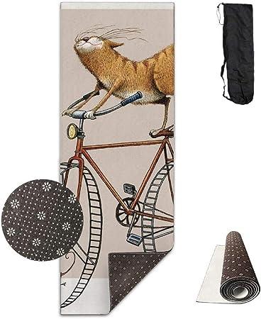 Louis Berry - Esterilla de Yoga Antideslizante para Bicicleta de Gato, para Ejercicios aeróbicos: Amazon.es: Hogar