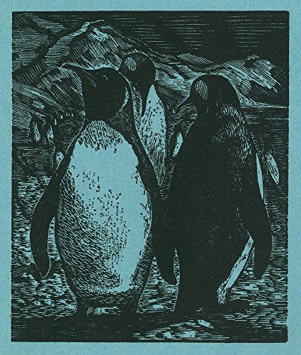 (Nature Magazine - View of Penguins on Floating Ice (16x24 Giclee Gallery Print, Wall Decor Travel Poster))