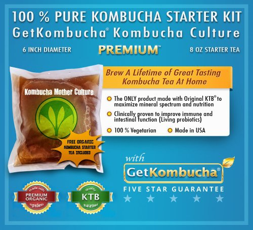North Original Plus Glove - Organic Kombucha Starter Kit - All Natural and Raw by GetKombucha - Largest SCOBYCulture in North America (6 Inch) w/ FREE Kombucha Starter Liquid, Jar Covers, Ph Strips, Filter, Gloves, and More!