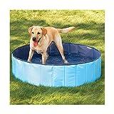 FurryFriends LARGE Foldable Dog Pool - Folding Dog / Cat Bath Tub - Collapsible Pet Spa (Large, Blue)