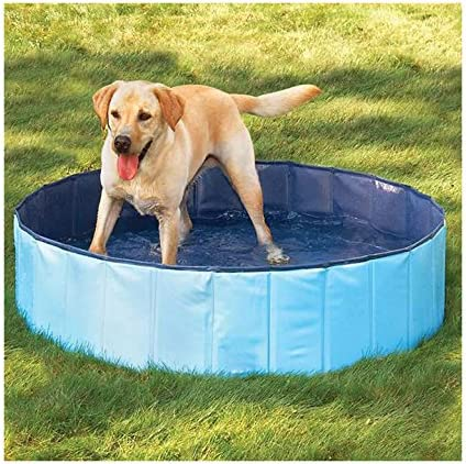Furryfriends Large Foldable Dog Pool Folding Dog Cat Bath Tub Collapsible Pet Spa Medium Blue Amazon Ca Pet Supplies