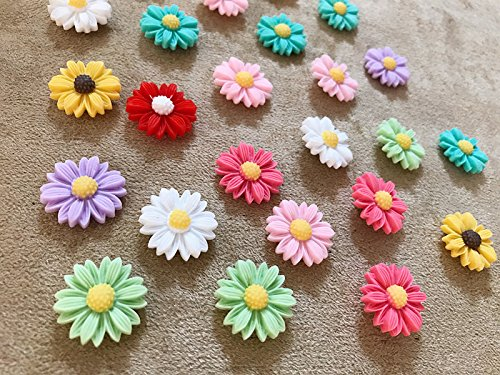 24Pcs Decorative Pushpins,Cork Board Tacks,Bulletin Board Tacks,Thumb Tack Decorative for CorkBoard, Office Organization or Home (Assorted Color) (Bulletin Pins Board)