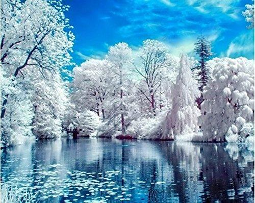 Country Snow - Dorara 5D DIY Diamond Painting, Cross Stitch DIY Diamond Painting,Country snow scene, winter.12X16 Inches