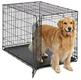 Large Dog Crate | MidWest iCrate Folding Metal Dog Crate w/Divider Panel, Floor Protecting Feet & Leak-Proof Dog Tray | 42L x 30W x 28H Inches, Large Dog Breed, Black