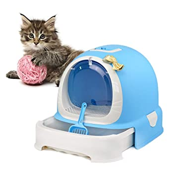 Amazon.com: DJLOOKK - Arenero para gatos con mango de ...