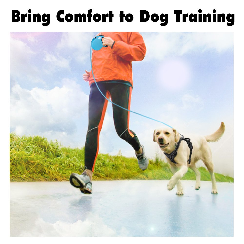 Rabbitgoo Dog Leash Retractable, 16ft Dog Walking Leash for Medium Large Dog Up to 110lbs, Break & Lock System, Reflective Ribbon Cord(Black) GLOBEGOU CO. LTD