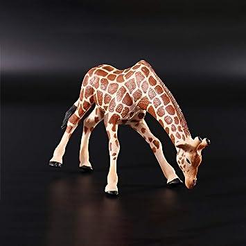 Animales Acción Figuras Zoo De Salvajes Estatuillas Ronshin Mini QECreWdBxo